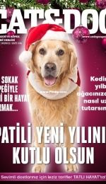 Cat and Dog - Aralik 2020/12 - Turkish