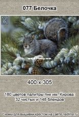 Nadima - Squirrel