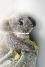 Koala by Claire Garland - Free