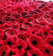 Crochet Poppies 5 versions by Loopy Sue