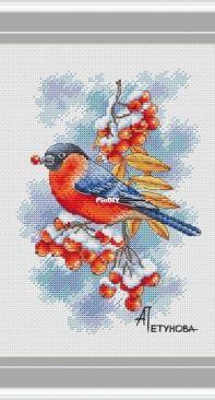 Winter Guests - Bullfinch by Anna Petunova