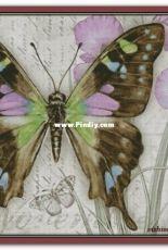 Chimera - Butterfly Vintage 11 by Jane Shasky