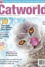 Cat World - February 2019