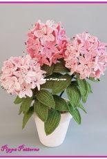 Pippa Patterns Crochet - Connie Rockliff - Rhododendron