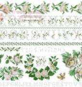 DMC XC1067 White Roses Sampler