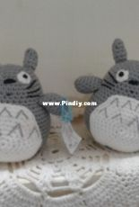 totoro an order for a customer