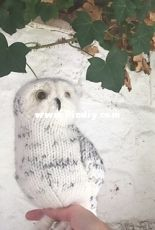 Snowy Owl by Claire Garland
