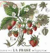 Les Brodeuses Parisiennes - L'etude aux Fraises 1