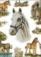 Anchor - APC931 Country Horses