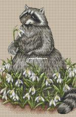 Raccoon in the Snowdrops by Ekaterina Chaykovskaya