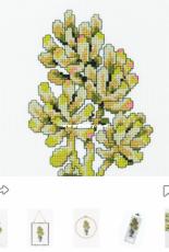 DMC Nature - Jelly Bean Succulent - Free