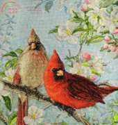 Bucilla Heirloom Collections 45479 Cardinals