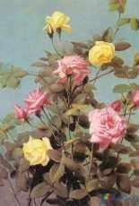 Laura Stitch Fiori 049 - Rose