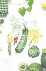 V. Enginger - Mon Jardin Potager 2018 - Mango - Une Courge qui en jette XSD
