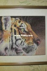 Dim 35171 Regal Tiger