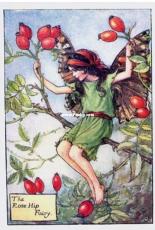 Tilton Crafts - The Rose Hip Fairy - Flower Fairy Collection