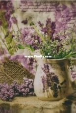 Chimera - Lilac Provence
