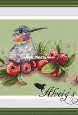 Alveig's Stitch - Hummingbird by Ekaterina Ramaykina