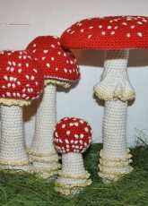 CAROcreated - Allescaro design - Carola Herbst - Toadstool Fly Agaric in 4 different stages