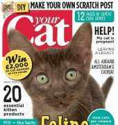 Your Cat Magazine - March 2015