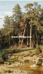 EstE 150 Pine Forest XSD