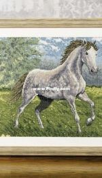 Wild and Free - Wild Horse from Cross Stitch Gold 121