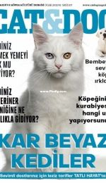 Cat and Dog  - Ocak 2021/01 Sayi 107 - Turkish