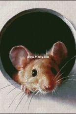 Bozenka 1001 - Mouse