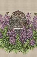 Owl in Crested  by Ekaterina Chaykovskaya