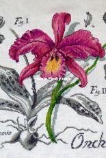 Les Brodeuses Parisiennes Veronique Enginger - Orchidee