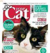 Your Cat-December-2014