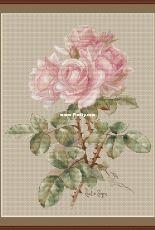 Draganka Designs - Vintage Roses by Tatiana / Tatyana Draganova