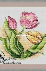 Tulips by Anna Kuznetsova