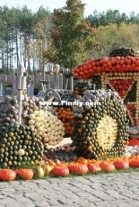 Pumpkin exhibition