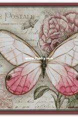 Chimera - Butterfly Vintage 4 by Jane Shasky