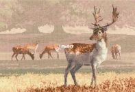 Heritage Crafts - Deer Park