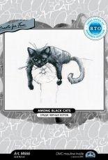 RTO M666 - Among Black Cats
