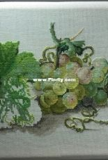 Grapes from Ekaterina Volkova