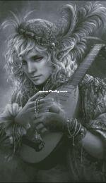 Chimera - Musician