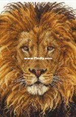 DMC BK1668 Lions Pride