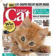 Your Cat-February-2015