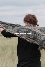 Banrion Shawl by Playing With Fibre - FREE
