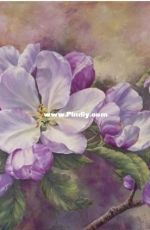 HAED HAEMABMINI 14941 Mini Apple Blossom by Marianne Broome (Large Format)