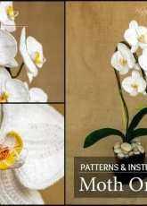 Happy Patty crochet - Moth Pal Orchid