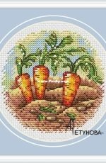 Carrot by Anna Petunova