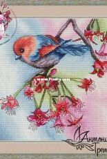 Bird of Paradise by Antonina Tretyakova (Kafetr)